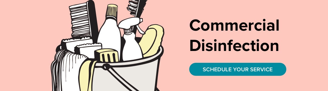 Disinfection-blog-ad 2 (1)